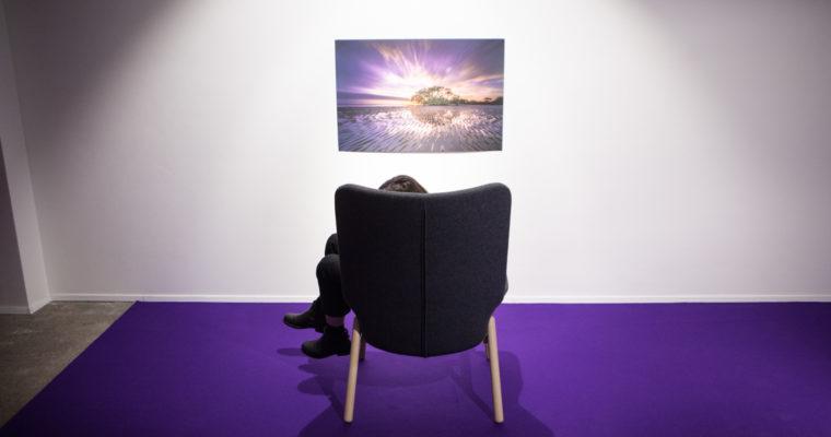 Tereza Fišerová – Studio Violet